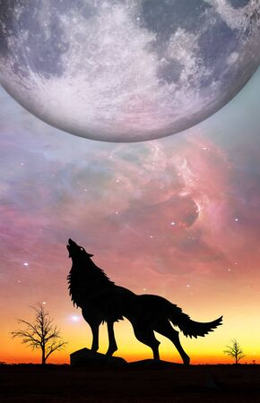 Fantasy landscape for e book cover - Howling wolf silhouette with huge planet rising in unreal sky.