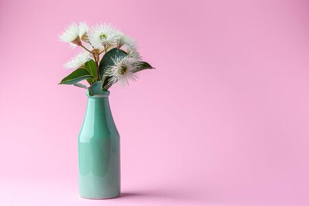 Eucalyptus flowers with leafs in green bottle on pink background with copy space