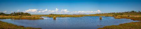 Wide panorama of coastal wetlands in Hastings, Victoria, Australia Stock fotó