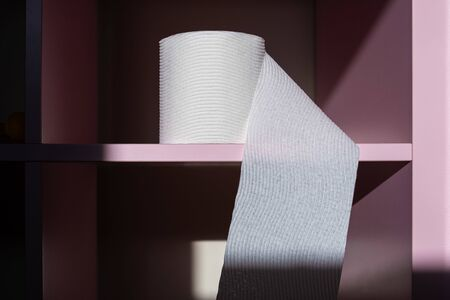Closeup of toilet paper roll on empty pink shelf