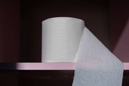 Textured toilet paper roll on pink shelf - closeup with copy space Banco de Imagens