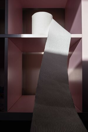 White textured toilet paper flowing from the roll placed on empty shelf with light and shadow play Banco de Imagens - 146509220