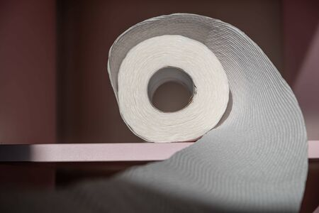 Toilet paper spiral from the roll on pink shelf closeup with shallow focus Banco de Imagens - 146509204