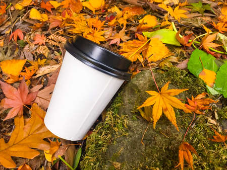 Disposable coffee cup laying in the ground among yellow autumn leafs with copy space