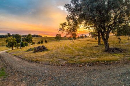 Farmland at sunset in Australia