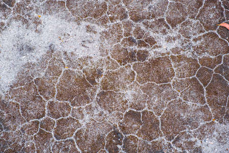 Dry sand with cracks abstract background