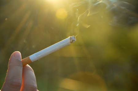 smoldering: cigarette held in the hand. Harmful to health. Smoking at sunset. rays of the sun. smoldering cigarette.