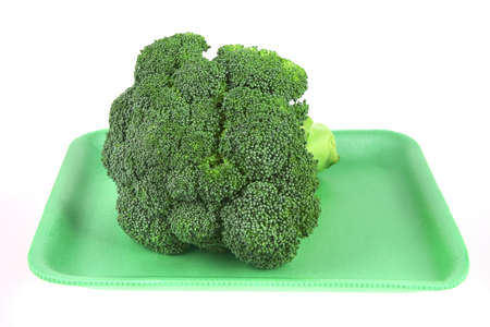 raw broccoli on plastic plate isolated over white photo