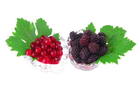 image of served wild berry on white background Stock Photo - 7567458
