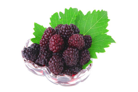small portion of wild berry over white background Stock Photo - 7592047