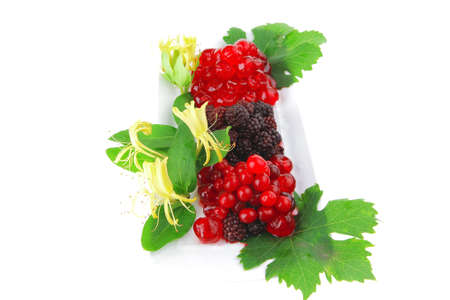 image of blackberry, cherry and cranberry on white photo