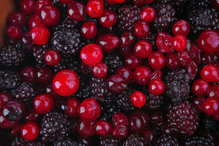 image of fresh raw wild red and black berry photo