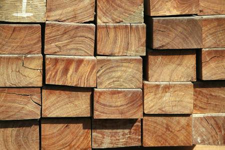 image of woods Stock Photo - 7681828