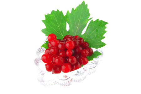 small portion of wild berry over white background photo