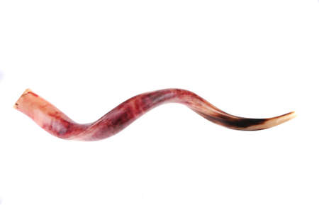 ram horn ( shofar ) isolated over white background photo