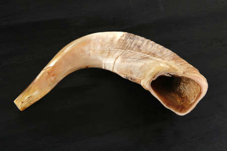 ram horn ( shofar ) isolated over black background photo