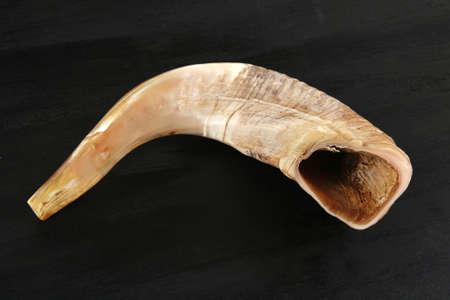 ram horn ( shofar ) isolated over black background photo