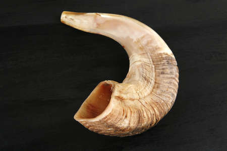 shofar: ram horn ( shofar ) isolated over black background