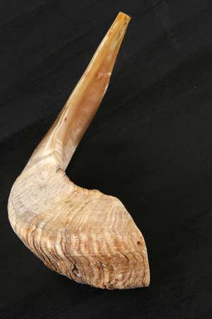 shofar: corno di RAM (shofar) isolato su sfondo nero