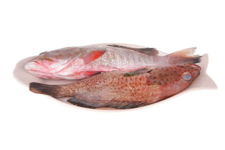 sunfish: set of fresh raw fish on plate over white background Stock Photo