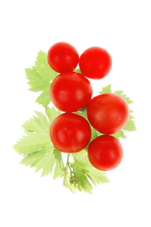 fresh cherry tomatoes on green branch with leaves isolated on white background photo