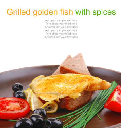 fish fillet with greek olives,tomatoes,chives and lemon on plate Stock Photo - 14702879