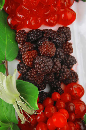wild berrys and cherry on white plate photo