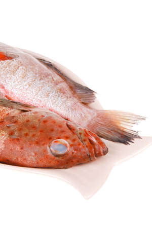 two raw fresh bass fish on ceramic plate prepared Stock Photo - 20331002