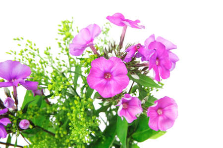 botan: flowers : small bouquet of pansy flowers with green grass isolated over white background