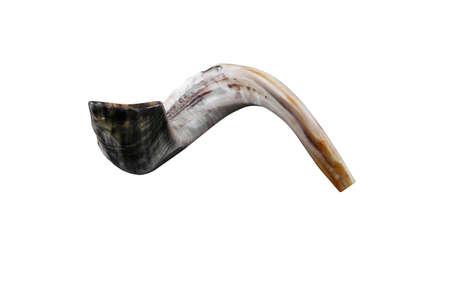 shofar: jewish piccolo shofar corno isolato su sfondo bianco Archivio Fotografico