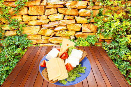 savory set of cheese greek goat feta yellow fromage french on blue plate over wooden tablen at outdoor garden near old ancient wall photo