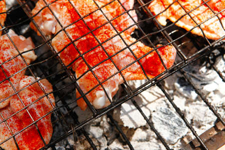 fresh raw chicken wings on barbecue grid over charcoal spread with paprika and red hot pepper ready to cooking photo