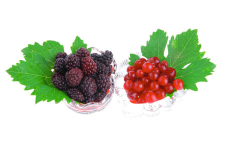 image of served wild berry on white background photo
