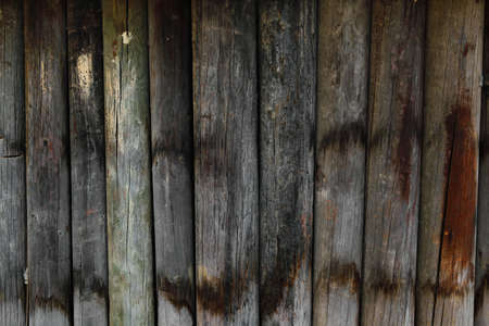 high resolution background texture of natural dark wooden wall photo