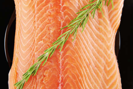 seafish: raw fresh uncooked salmon red fish fillet on black plate with rosemary twig isolated over white background
