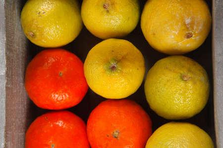 over packed: lim�n crudo dulce y mandarina envasados ??en caja de madera listo para el transporte aislado m�s de fondo blanco