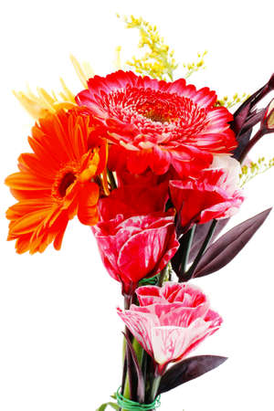bouquet of flowers: red and orange gerbera , rose and gold mums flowers in bouquet isolated over pure white background