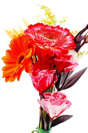 bouquet fleurs: rouge et orange gerbera, rose et or fleurs mamans en bouquet isolé sur fond blanc pur Banque d'images