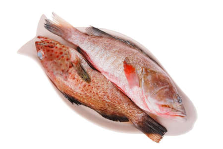 sunfish: raw fresh sunfish prepared for cooking on ceramic plate Stock Photo