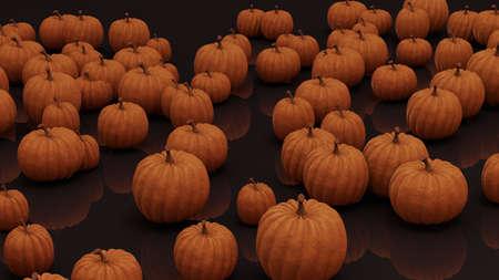 pumpkin patch on black glossy ground photo