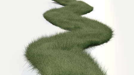 3d grass path photo