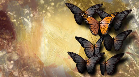 Graphic illustration of beautiful, fully developed Monarch Butterfly among undeveloped  gray, black ones. Simple illustration of of being unique. 스톡 콘텐츠
