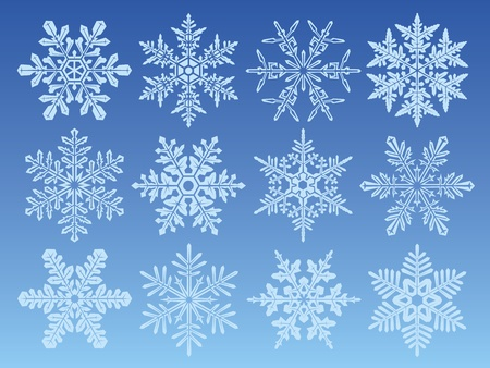 Icon set with 12 different snowflakes