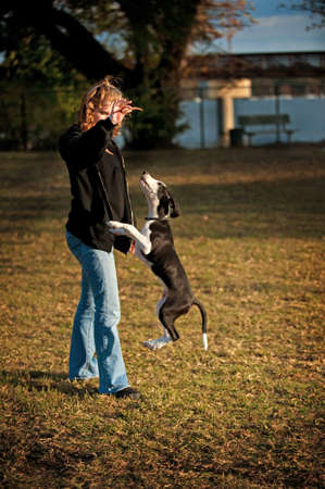 Image of a woman with dog jumping doing tricks photo