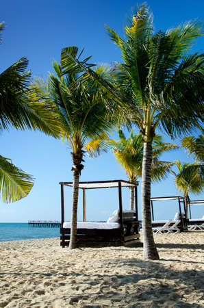 cabana: Image of a beautiful beach scene, featuring cabana beds, palm trees, beach, ocean and blue sky