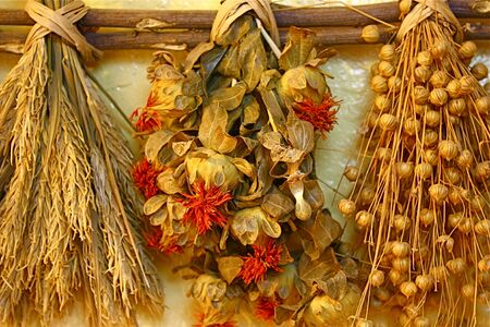 Dried spices hanging on wall