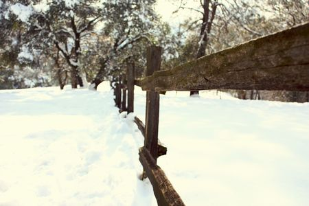 Old wood fence in the snow Stock Photo - 6076771
