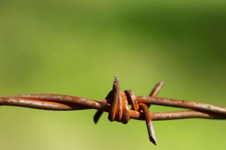 Barbed wire  Foto de archivo