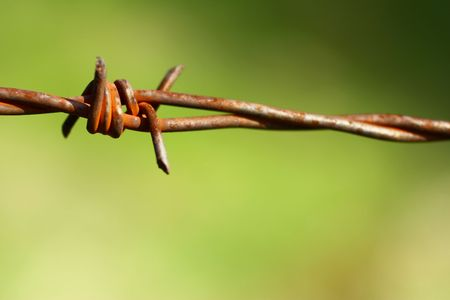 Barbed wire Stock Photo - 6436636