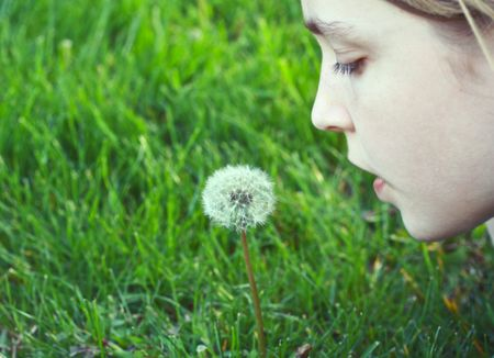 Girl trying to blow on a dandelion photo